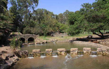 Villa Pnai Nature